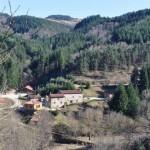 Forfaits chasse en Auvergne pour grands et petits gibiers au domaine de Raboulet