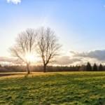Acheter un terrain constructible dans le Sud de la France