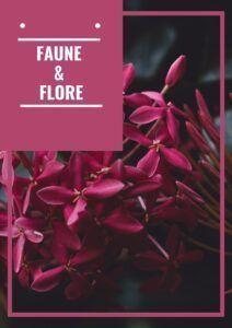 Livre sur la faune et la flore